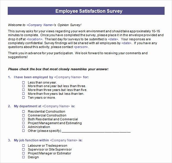 Satisfaction Survey Template Word Unique Employee Satisfaction Survey