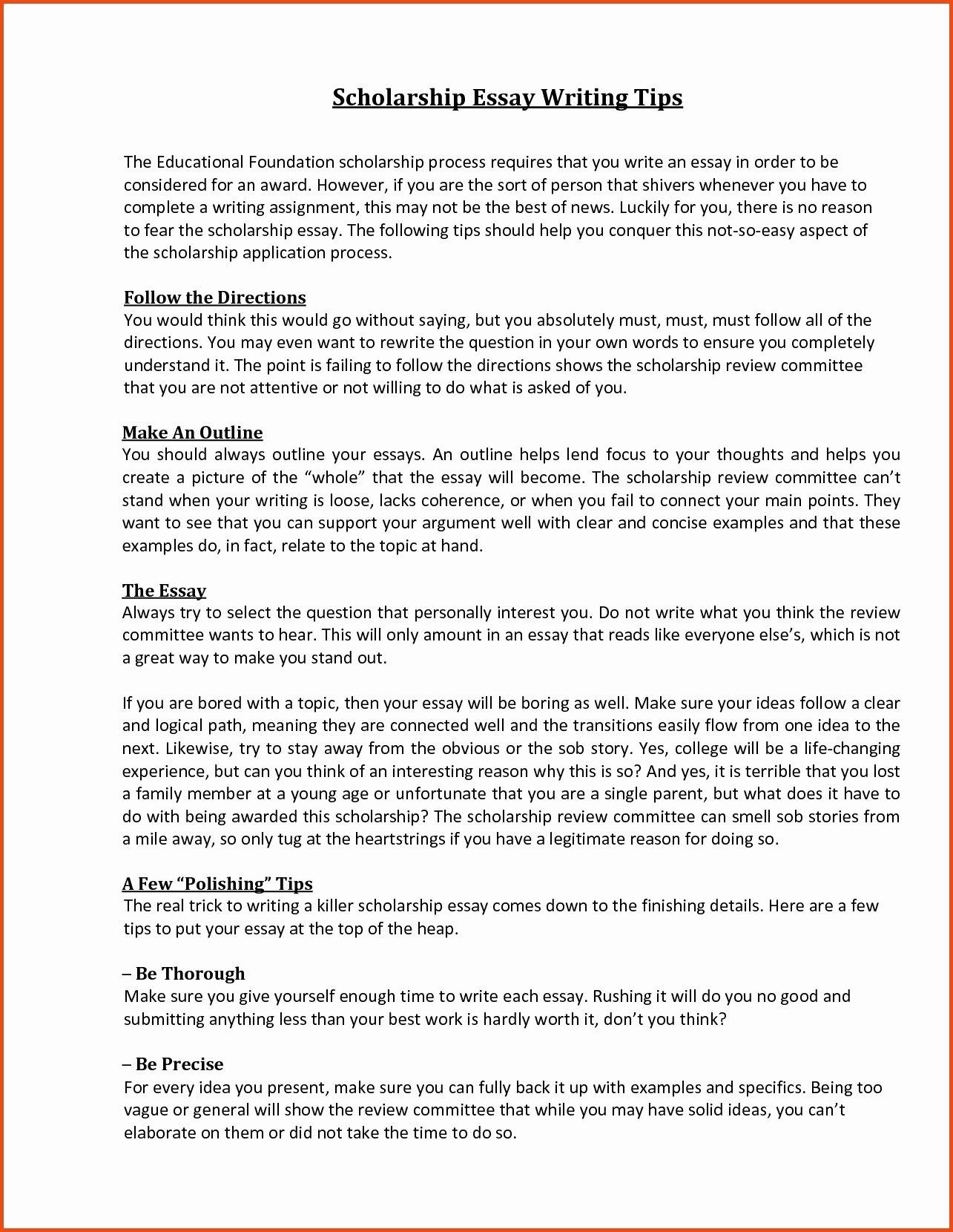 Scholarship Essay Examples 500 Words Unique Scholarship Essay format Sample