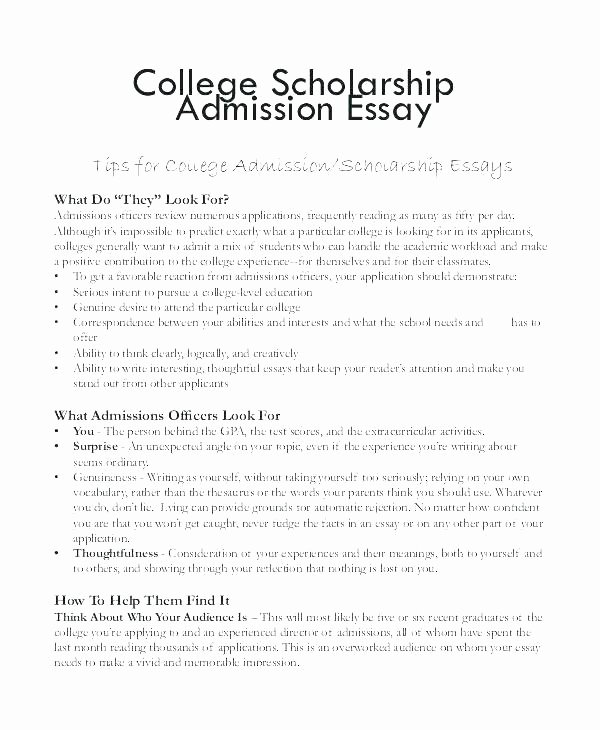 Scholarships Essays Examples About Yourself Luxury 500 Word Scholarship Essay Examples Scholarship Essay