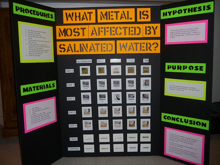 Science and Technology topics Beautiful Science Fair Board Examples