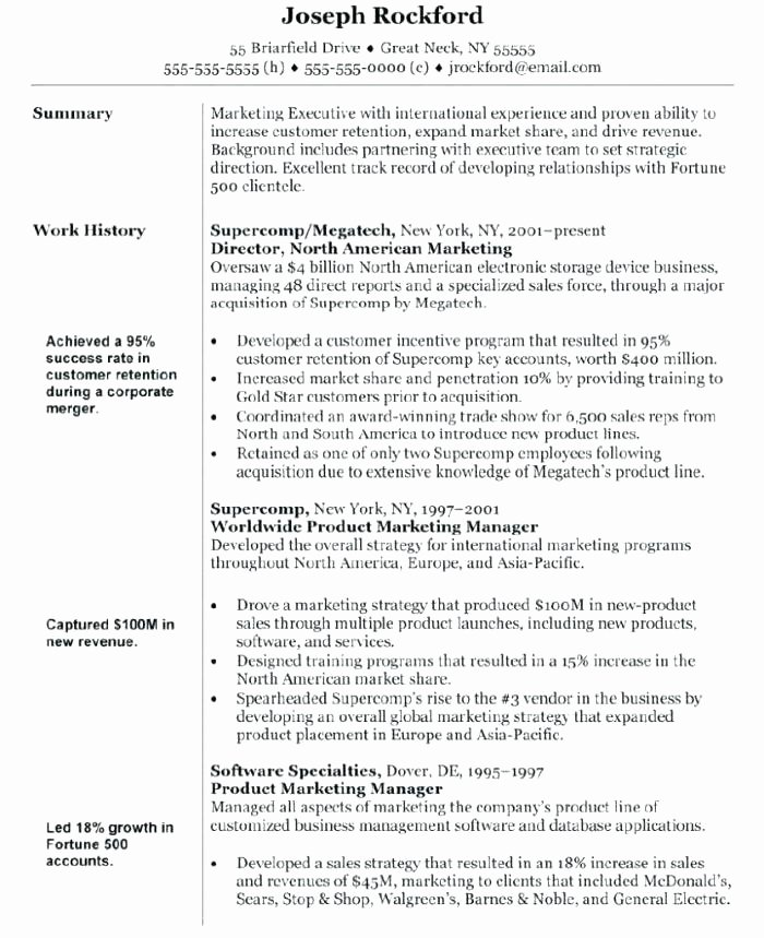 Search Engine Evaluator Resume Beautiful Digital Marketing Resume Sample Strategic Executive for