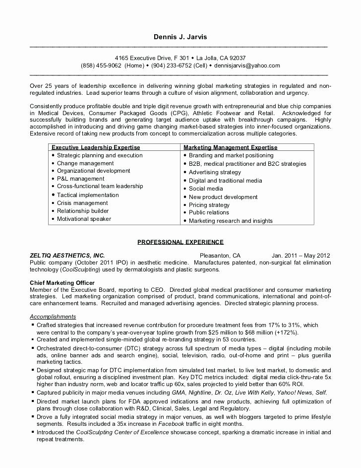 Search Engine Evaluator Resume Fresh Digital Marketing Resume Sample Strategic Executive for