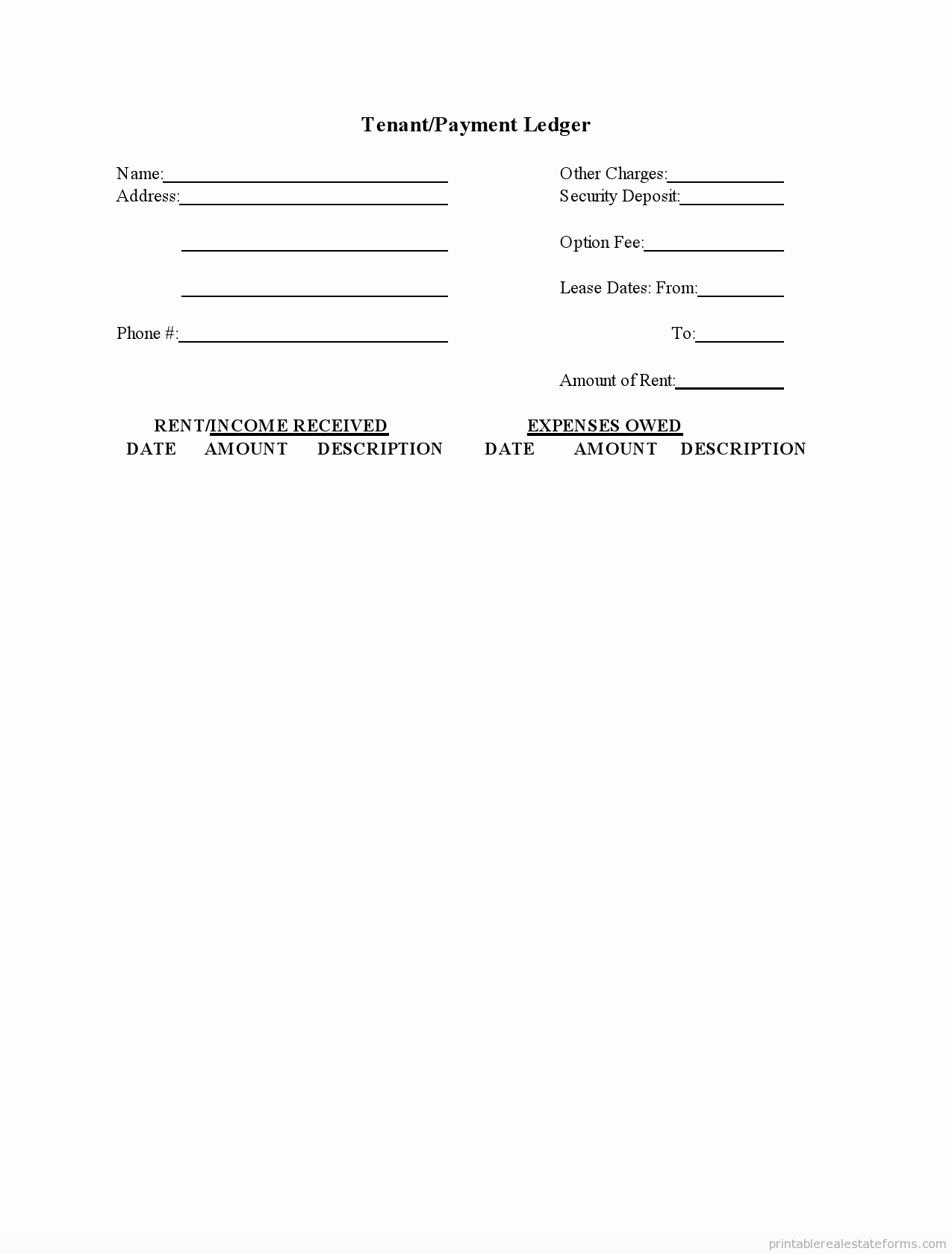 Self Employment Ledger forms New Sample Printable Tenant Payment Ledger form