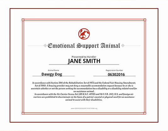 Service Dog Id Card Template Free Download Best Of Service Animal Certificate Template Reeviewer