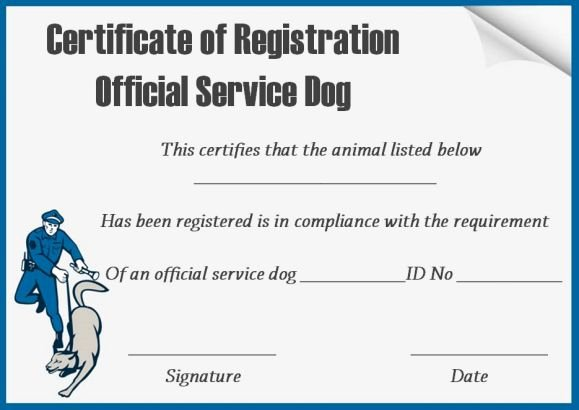 Service Dog Id Card Template Free Download Elegant Service Dog Certificate Template 10 Word Templates for