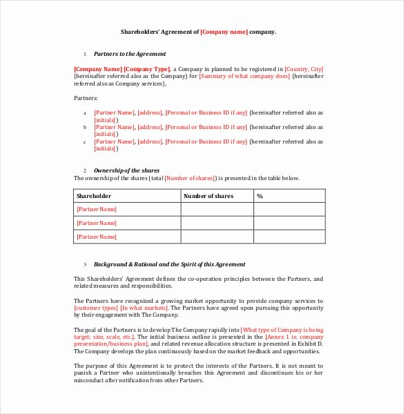 Shareholder Letter Template Best Of 18 Holder Agreement Templates Free Word Pdf