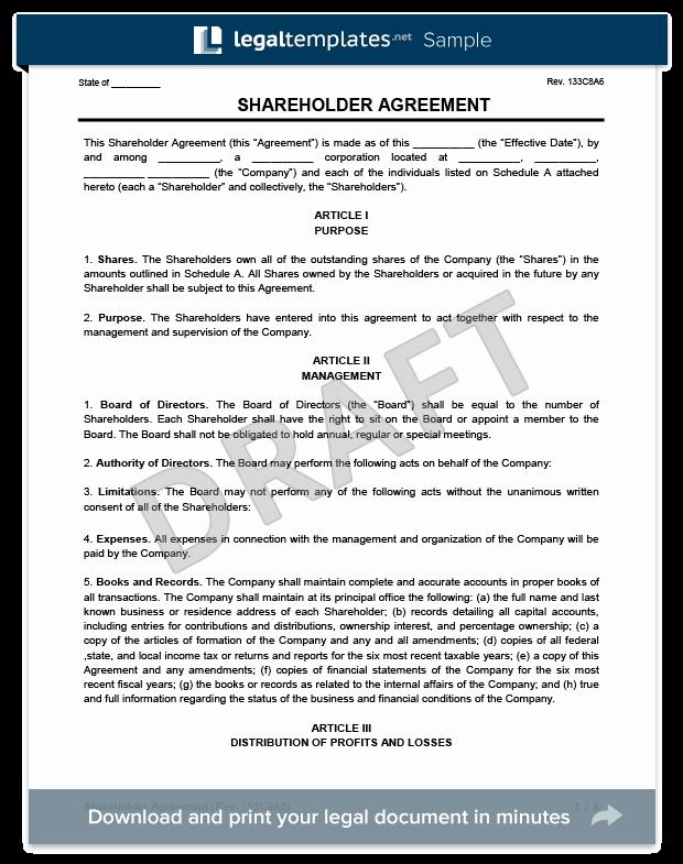 Shareholder Letter Template Luxury Holder Agreement Create A Free Holder
