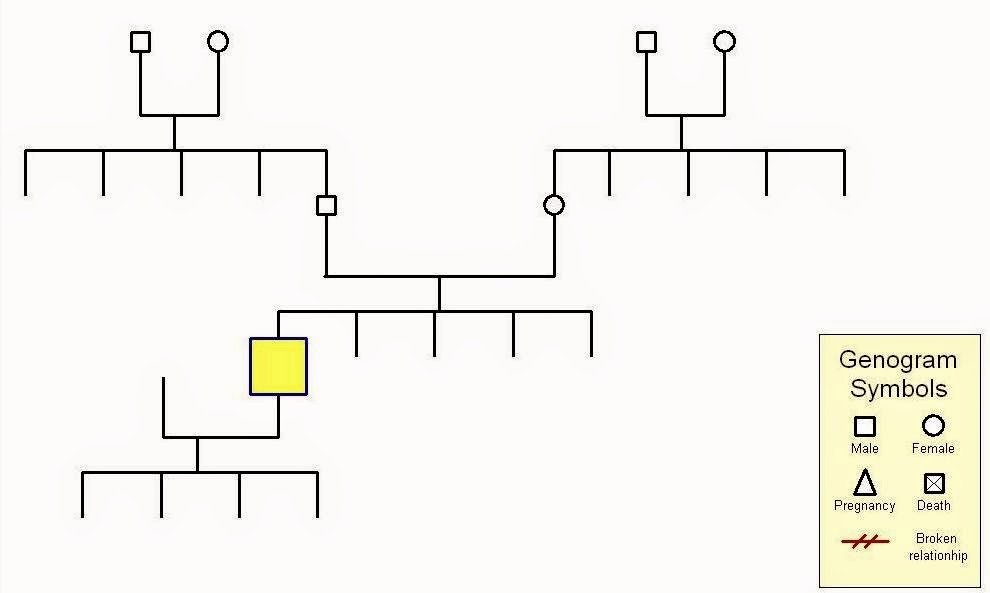 Simple Genogram Example Fresh who We are and How We Got This Way Iajgs 2014 Tuesday