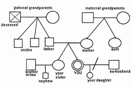 Simple Genogram Example Unique 6 Genogram Templates Free Sample Templates