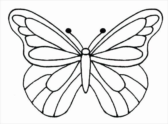 Small butterfly Template Elegant butterflies Template to Print – Gad Sworldfo