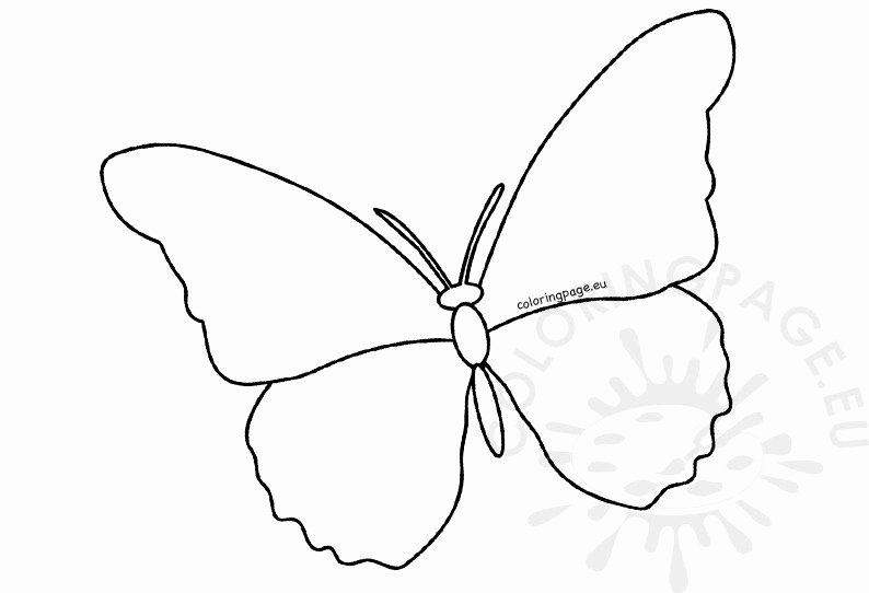 Small butterfly Template Elegant butterfly Cutout Template