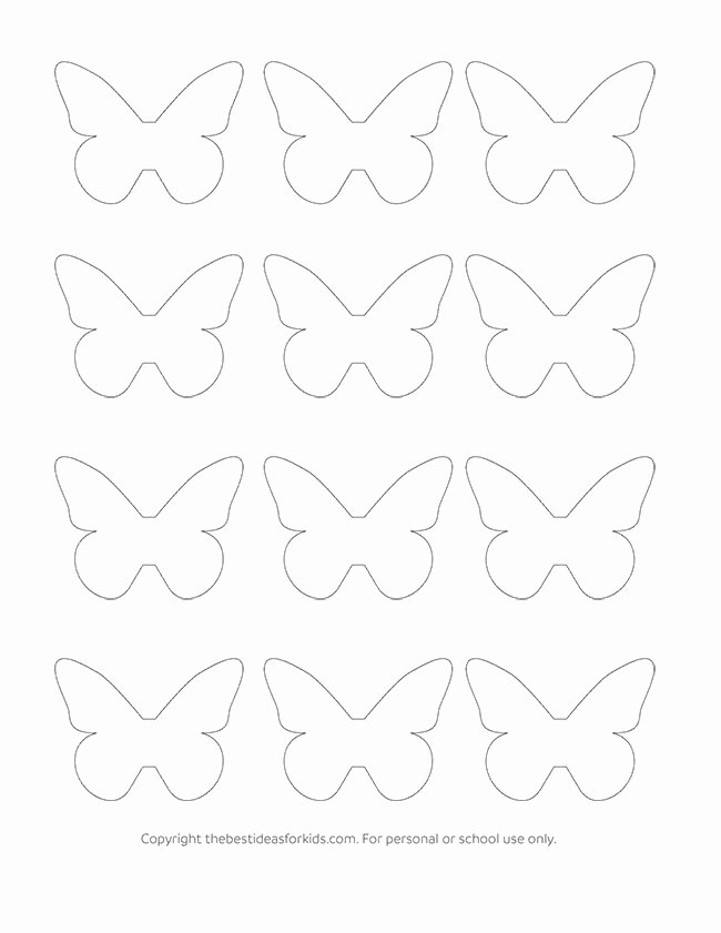 Small butterfly Template Inspirational butterfly Template the Best Ideas for Kids