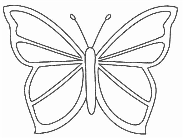 Small butterfly Template Lovely 28 butterfly Templates Printable Crafts & Colouring