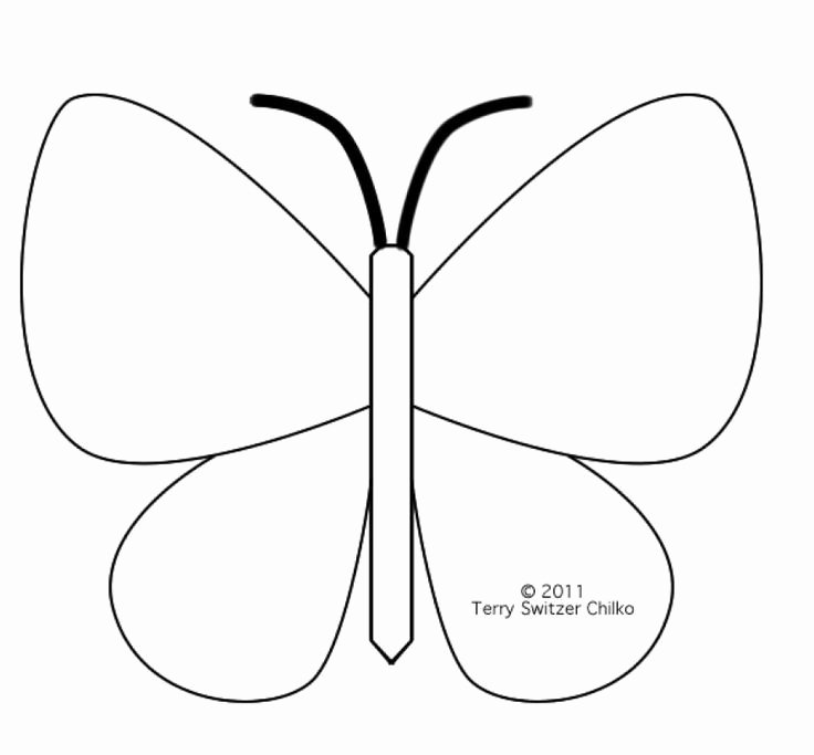 Small butterfly Template Lovely butterfly Template Printable Coloring Home