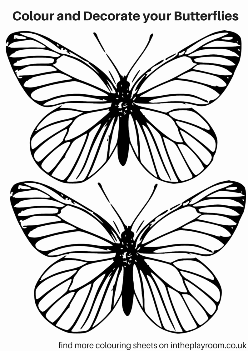 Small butterfly Template Lovely Free Printable butterfly Colouring Pages In the Playroom