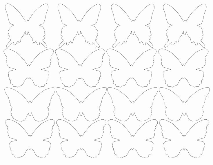 Small butterfly Template Luxury Diy butterfly Party Favor Free Printable Halfpint