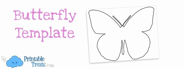 Small butterfly Template New Printable butterfly Template — Printable Treats
