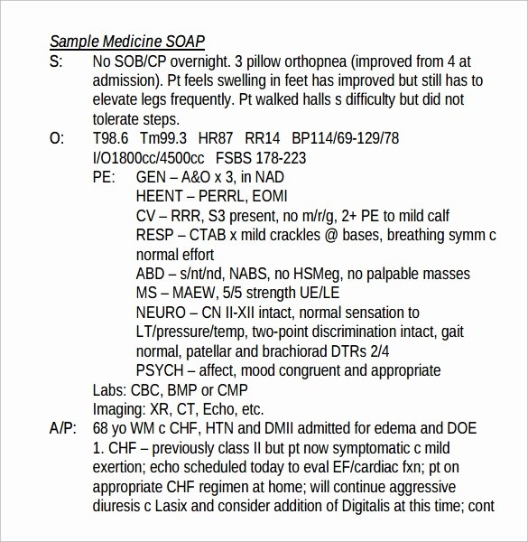 Soap Documentation Example Unique soap Note Example 12 Free Samples Examples format