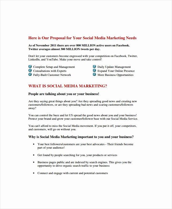 Social Media Marketing Proposal Pdf Beautiful 9 social Media Marketing Proposal Examples & Samples