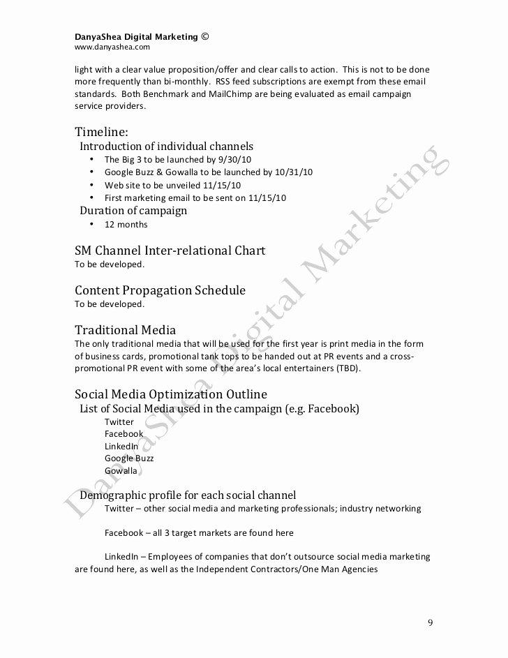 Social Media Marketing Proposal Pdf Beautiful social Media Marketing Plan Sample