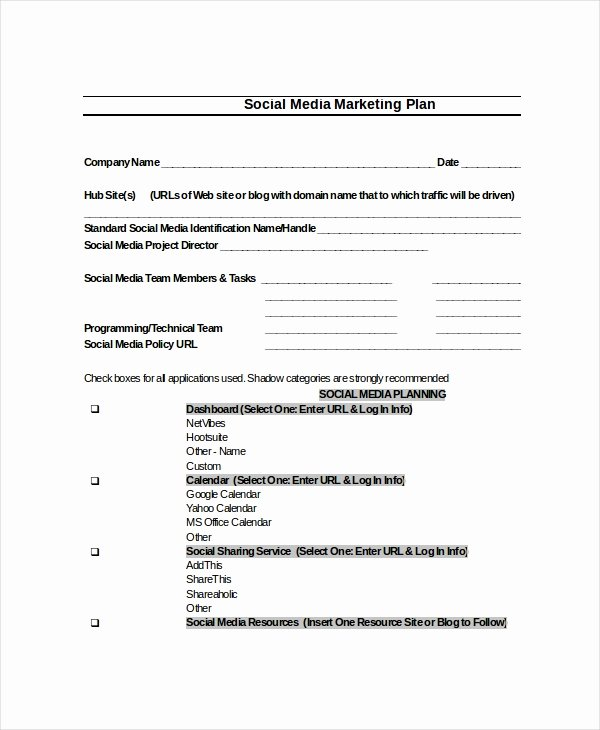 Social Media Marketing Proposal Pdf Inspirational Plan Template 18 Free Word Pdf Psd Indesign format