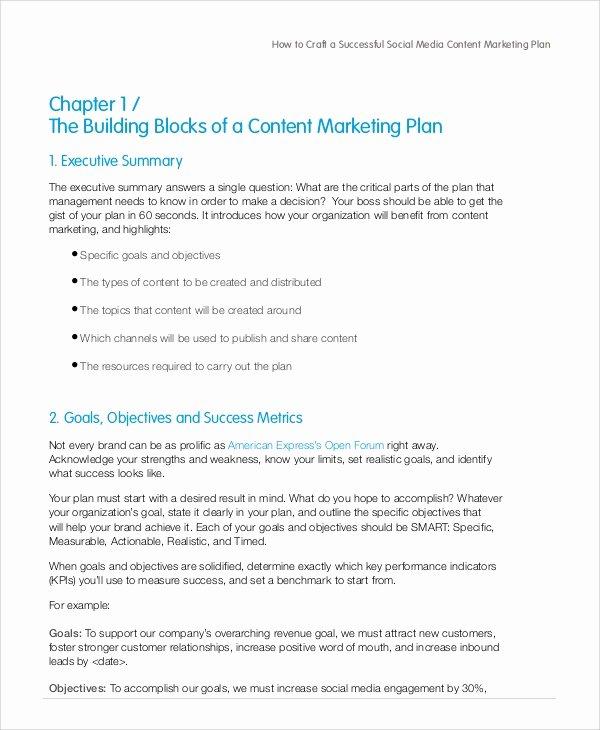 Social Media Marketing Proposal Pdf New Sample social Media Marketing Plan 9 Examples In Pdf