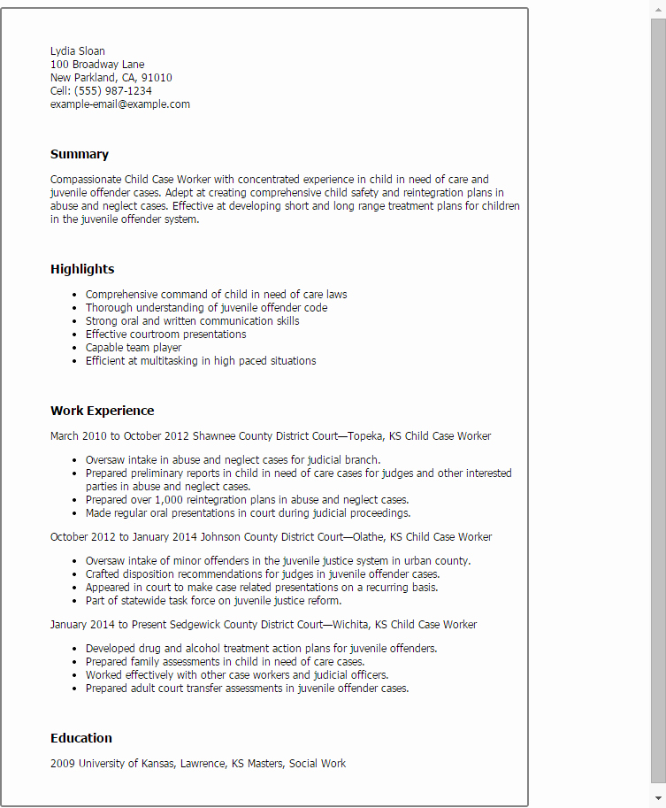 Social Work Case Notes Template Inspirational Professional Child Case Worker Templates to Showcase Your