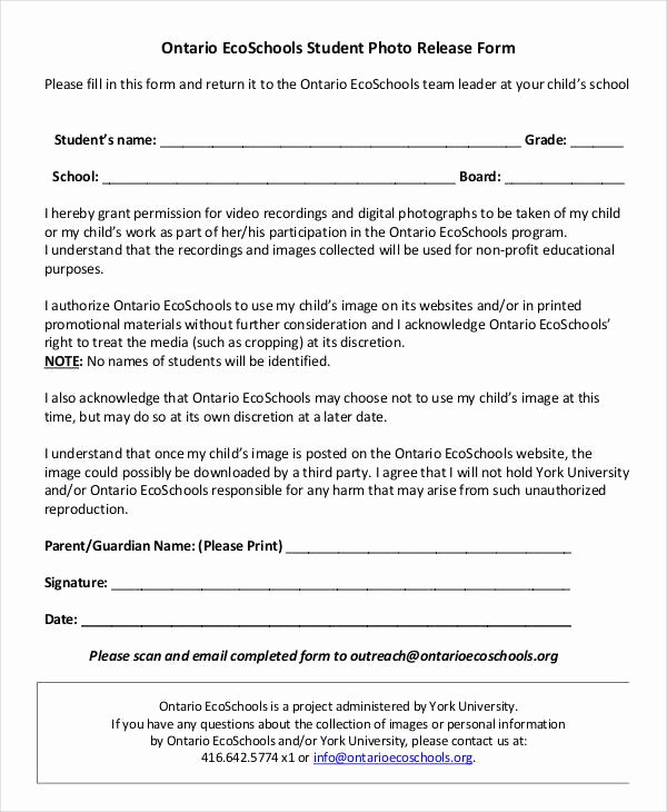 Standard Media Release form Template Elegant Release form Template 9 Free Pdf Documents