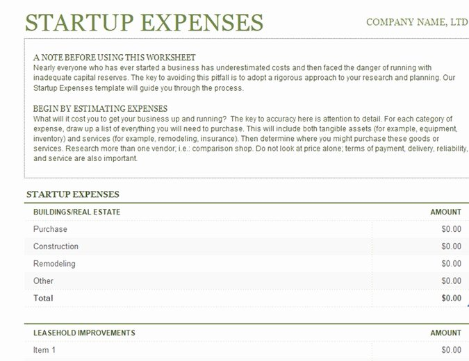 Startup Expenses and Capitalization Spreadsheet Luxury Profit and Loss Fice