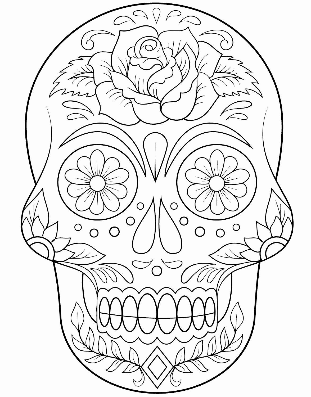 Sugar Skull Outline Awesome Calavera Outline Getting Crafty