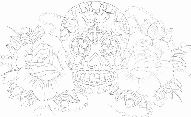 Sugar Skull Outline Beautiful south Coast Shutterbug Art is Born Of the Observation