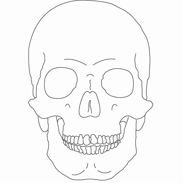 Sugar Skull Outline Fresh Skull Outline Ly by Vicious Fanart Central Liked On