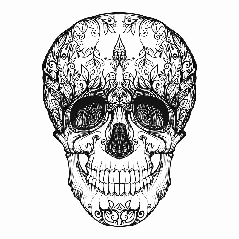 Sugar Skull Outline Lovely Sugar Skull the Traditional Symbol the Day the Dead