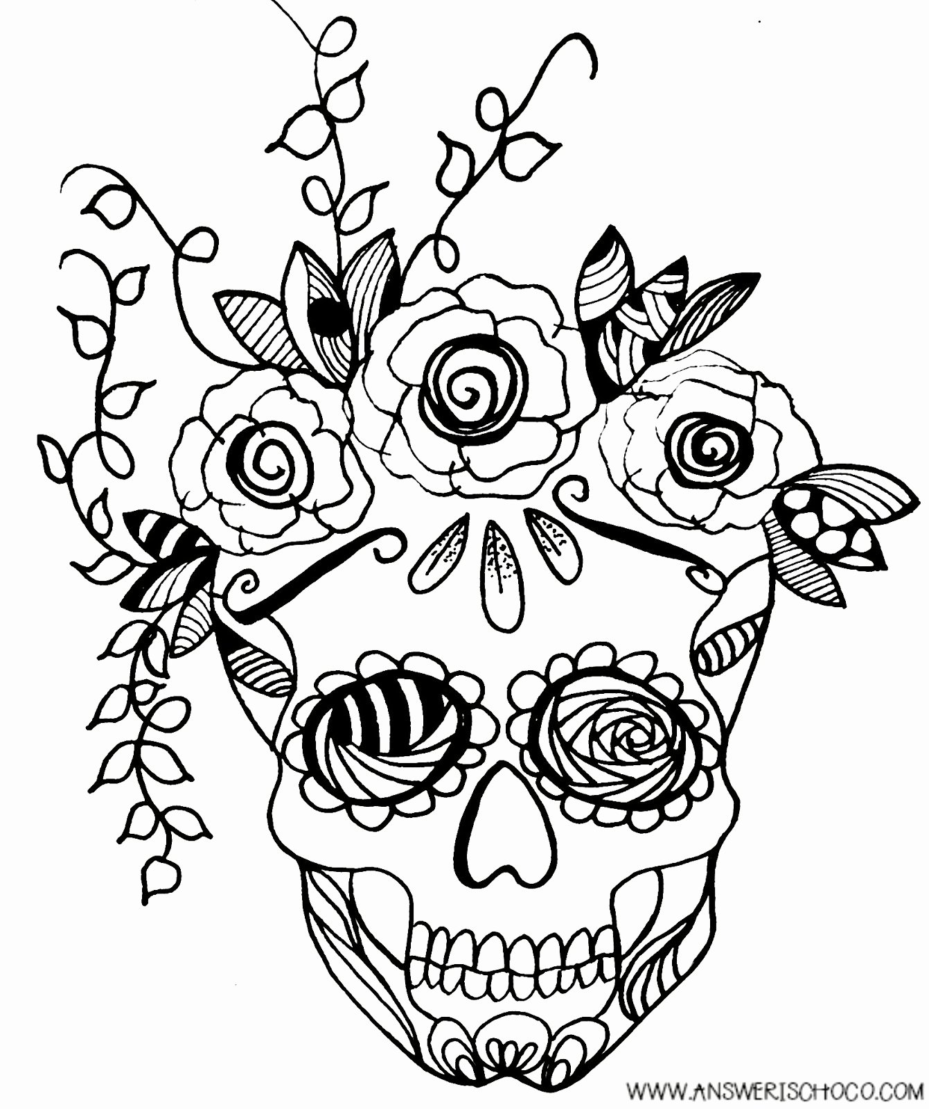 Sugar Skull Outlines Fresh the Answer is Chocolate Sugar Skull