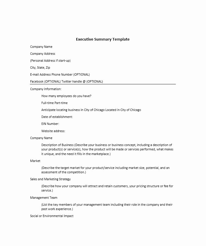 Summary Document Template Beautiful 30 Perfect Executive Summary Examples & Templates