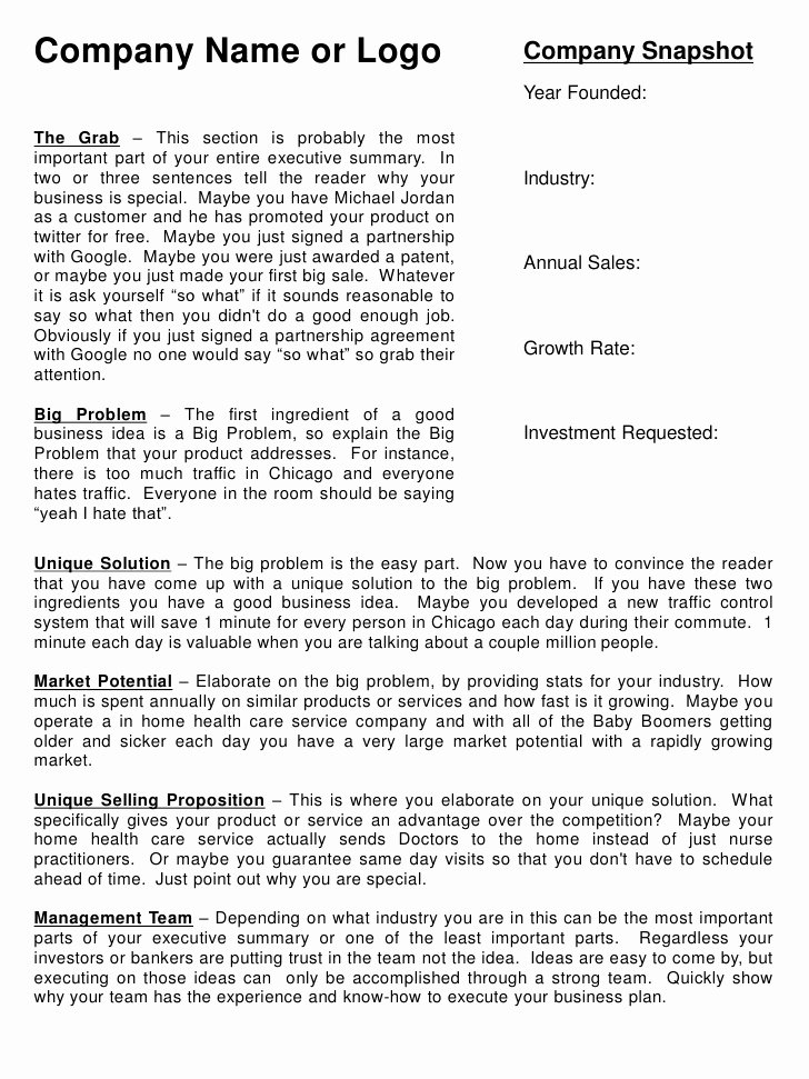 Summary Document Template Best Of Executive Summary Template