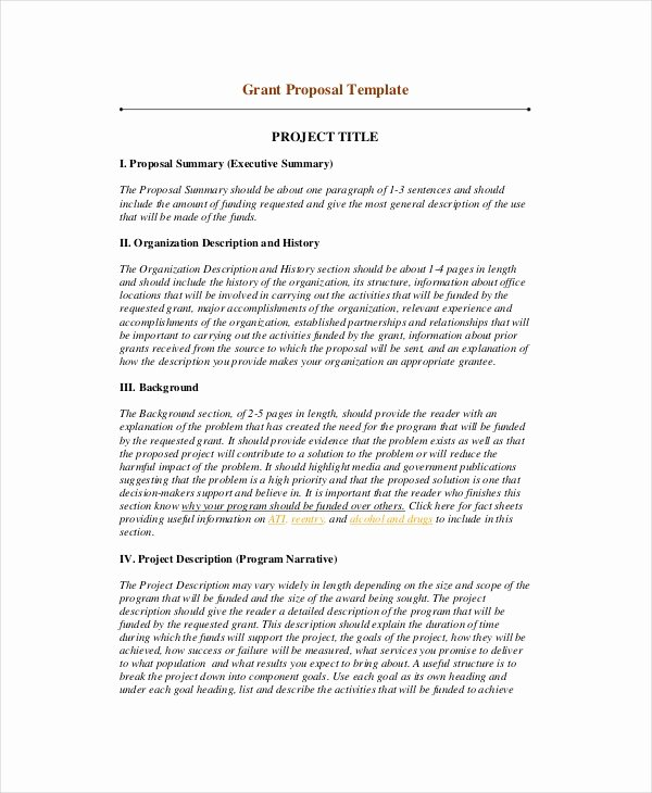 Summary Document Template Lovely 10 Project Summary Templates Pdf Doc