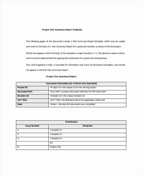 Summary Document Template Luxury 8 Project Summary Templates Free Word Pdf Document
