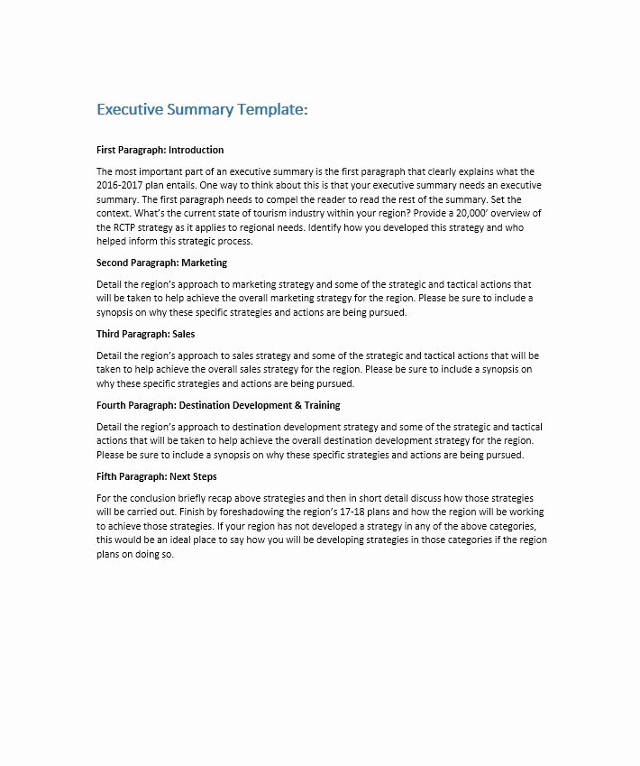 Summary Document Template New 30 Perfect Executive Summary Examples & Templates