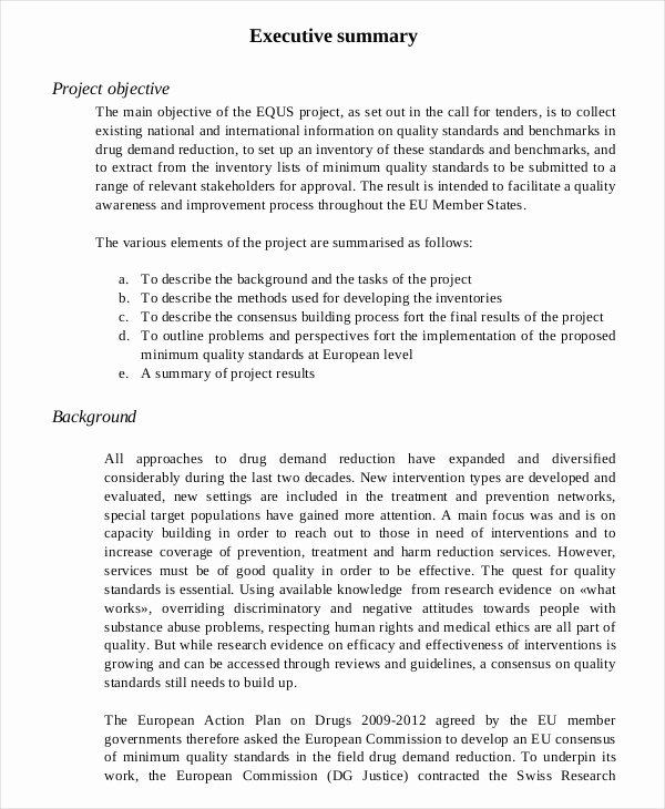 Summary Document Template Unique 20 Executive Summary Templates