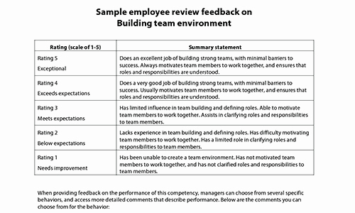 Summary Of Performance Examples Awesome Sample Performance Review Ments & Appraisal Feedback