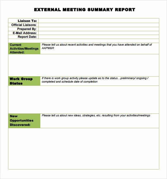 Summary Report format Best Of Sample Meeting Summary Template 7 Documents In Pdf