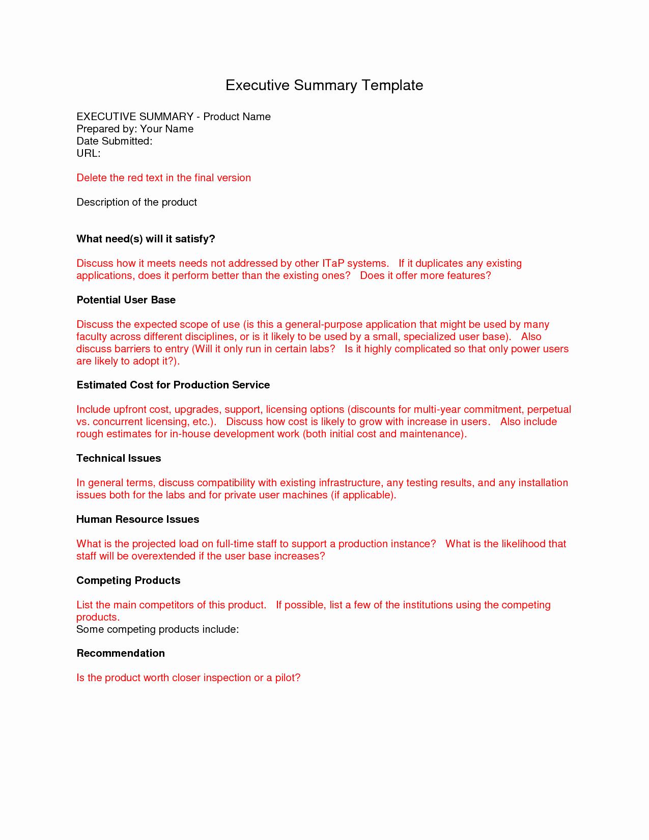 Summary Report format Elegant Executive Summary Template