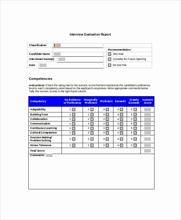 Summary Report format New Sample Interview Summary Templates 5 Free Documents
