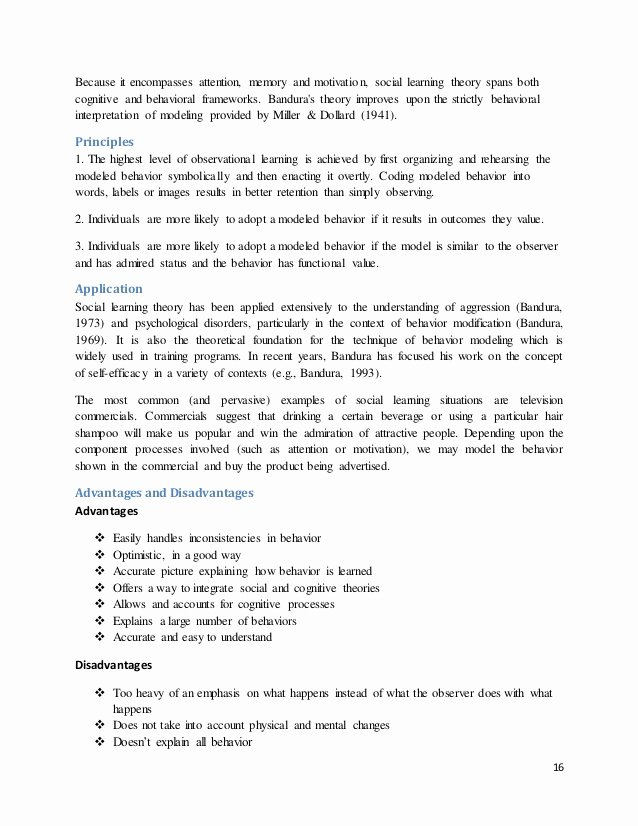 Team Player Definition Essay Luxury Essay On theory Of Motivation