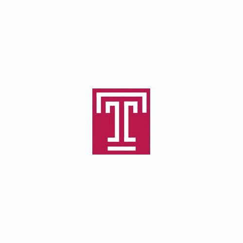 Temple University Essay Examples Inspirational Temple Dissertation Writing Retreat Judicial Precedent