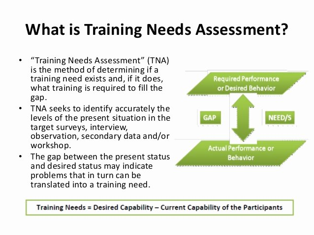 Training Needs Survey Elegant Training Need assessment