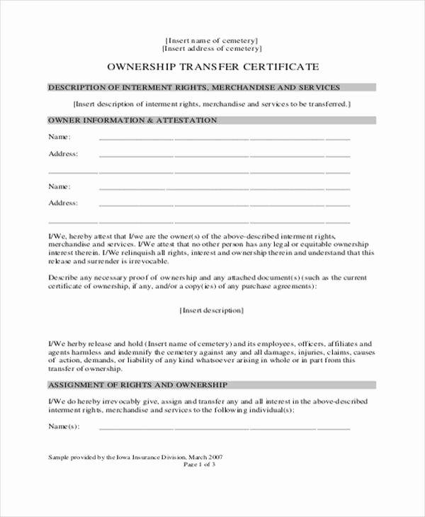 Transfer Of Ownership Agreement Template Unique 8 Ownership Transfer Letter Templates Pdf Doc