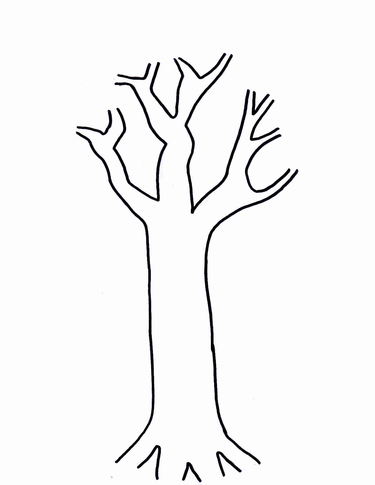 Tree Trunk Template New Printable Tree Template Coloring Home