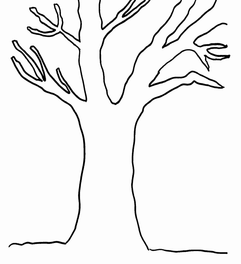 Tree Trunk Template New Tree Coloring Pages Dr Odd